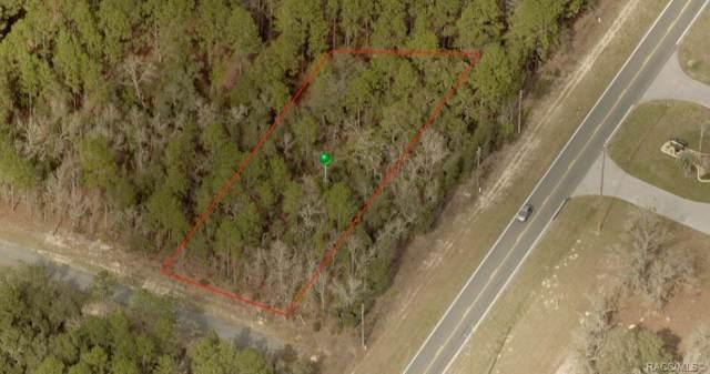 511 W Anderson Lane, Citrus Springs, FL 34434 (MLS #786797) :: Plantation Realty Inc.