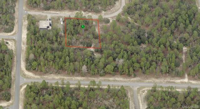 4015 W Abeline Drive, Citrus Springs, FL 34433 (MLS #786801) :: Plantation Realty Inc.