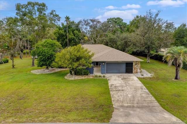 1355 Alameda Drive, Spring Hill, FL 34609 (MLS #786806) :: Plantation Realty Inc.