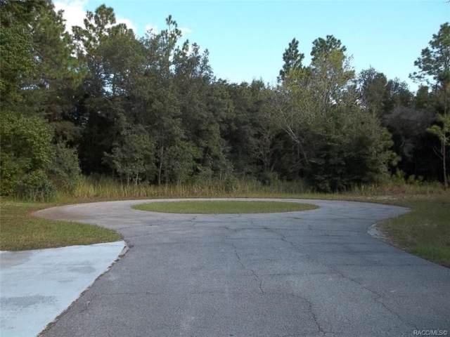 4401 N Lena Drive, Beverly Hills, FL 34465 (MLS #786808) :: Plantation Realty Inc.