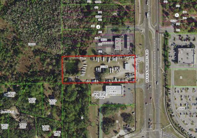 9474 S Suncoast Boulevard, Homosassa, FL 34446 (MLS #786809) :: Plantation Realty Inc.