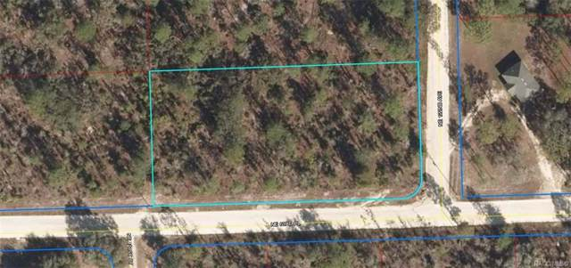 L4 NE 122nd Avenue, Bronson, FL 32621 (MLS #786814) :: Plantation Realty Inc.