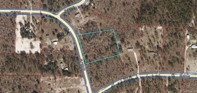L 1 SE 122nd Avenue, Morriston, FL 32668 (MLS #786819) :: Plantation Realty Inc.