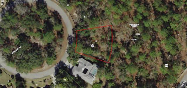 28 Boston Ivy Court, Homosassa, FL 34446 (MLS #786869) :: Plantation Realty Inc.