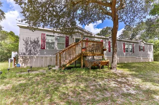 11501 E Head Court, Floral City, FL 34436 (MLS #786919) :: Plantation Realty Inc.