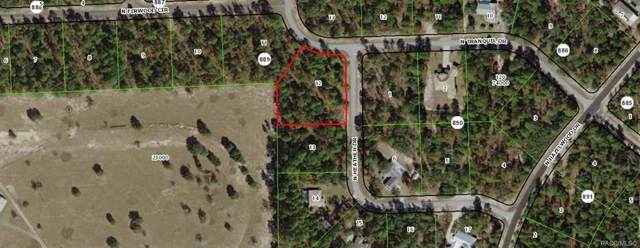7250 N Heather Drive, Citrus Springs, FL 34433 (MLS #786930) :: 54 Realty