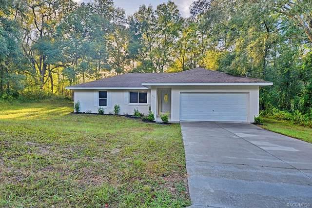 254 S Arlene Avenue, Inverness, FL 34453 (MLS #786943) :: Plantation Realty Inc.