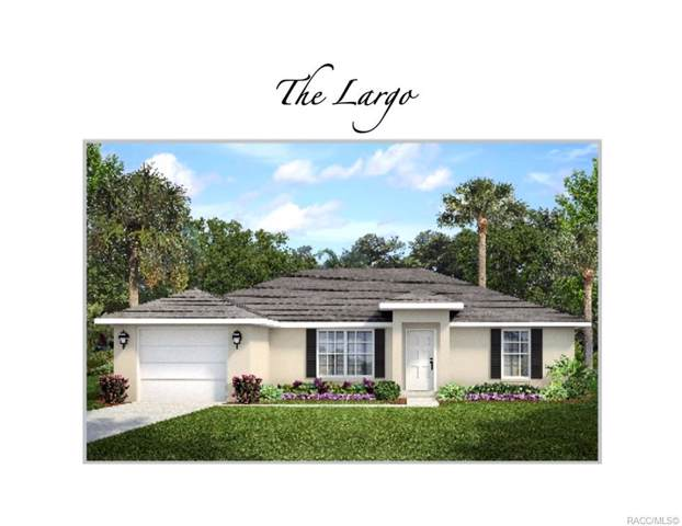 2895 W Gifford Lane, Citrus Springs, FL 34433 (MLS #786959) :: 54 Realty