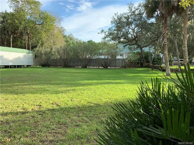 5431 S Boulevard Drive, Homosassa, FL 34448 (MLS #786976) :: Pristine Properties