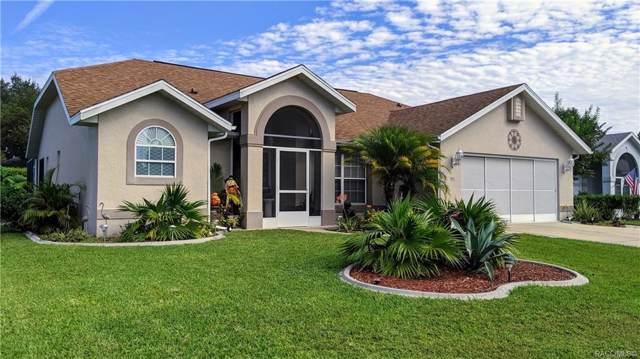 3917 E Arbor Lakes Drive, Hernando, FL 34442 (MLS #786999) :: 54 Realty