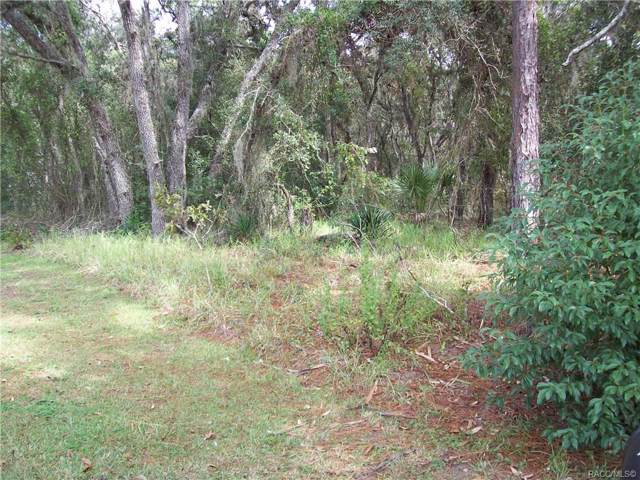 727 N Seton Avenue, Lecanto, FL 34461 (MLS #787074) :: Plantation Realty Inc.