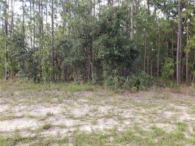 66 Corkwood Boulevard, Homosassa, FL 34446 (MLS #787089) :: Plantation Realty Inc.