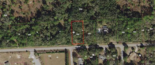 11393 W Gem Street, Crystal River, FL 34428 (MLS #787121) :: Plantation Realty Inc.