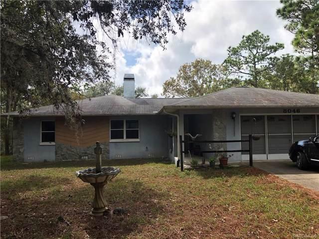 8046 N Dacca Terrace, Dunnellon, FL 34433 (MLS #787123) :: Plantation Realty Inc.