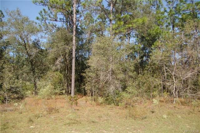 2691 W Royal Palm Drive, Citrus Springs, FL 34434 (MLS #787125) :: Plantation Realty Inc.