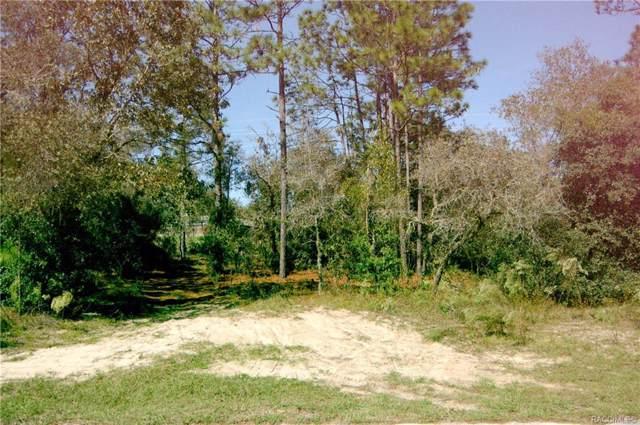 2705 W Royal Palm Drive, Citrus Springs, FL 34434 (MLS #787126) :: Plantation Realty Inc.