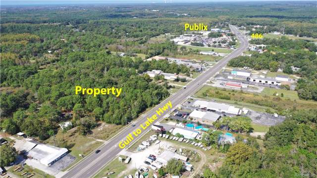 6584 W Gulf To Lake Highway, Crystal River, FL 34429 (MLS #787143) :: Plantation Realty Inc.