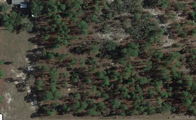 00 SW Soundview Drive, Dunnellon, FL 34431 (MLS #787211) :: Plantation Realty Inc.