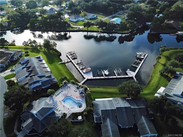 11029 W Harbor Watch Loop #33, Crystal River, FL 34428 (MLS #787278) :: Pristine Properties