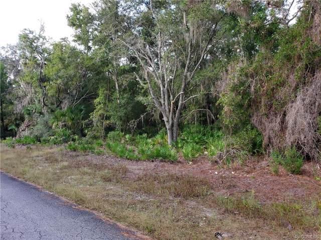 10288 N Twinflower Terrace, Crystal River, FL 34428 (MLS #787295) :: Plantation Realty Inc.