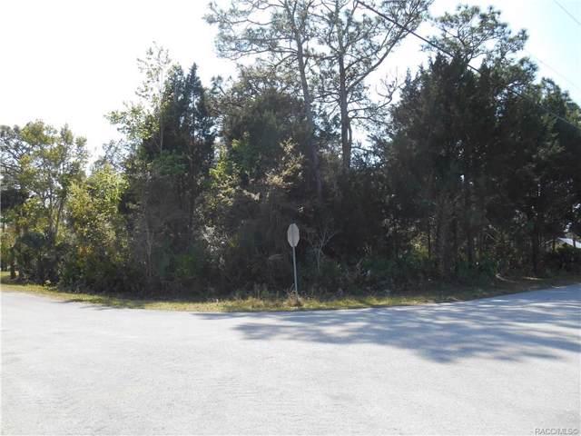 880 N Song Point, Crystal River, FL 34429 (MLS #787303) :: Plantation Realty Inc.