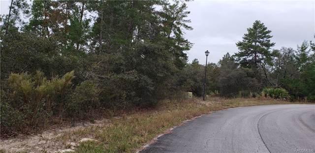 14 Thunbergia Court, Homosassa, FL 34446 (MLS #787324) :: Plantation Realty Inc.
