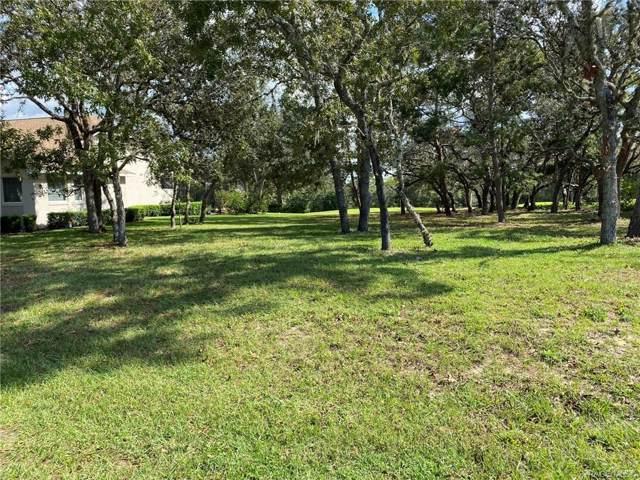 26 Ryewood Circle, Homosassa, FL 34446 (MLS #787336) :: Plantation Realty Inc.