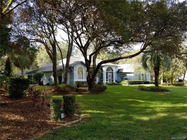 372 E Keller Court, Hernando, FL 34442 (MLS #787337) :: Pristine Properties