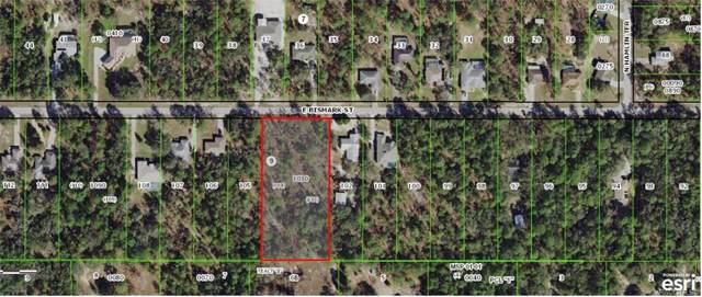 1648 E Bismark Street, Hernando, FL 34442 (MLS #787348) :: Plantation Realty Inc.