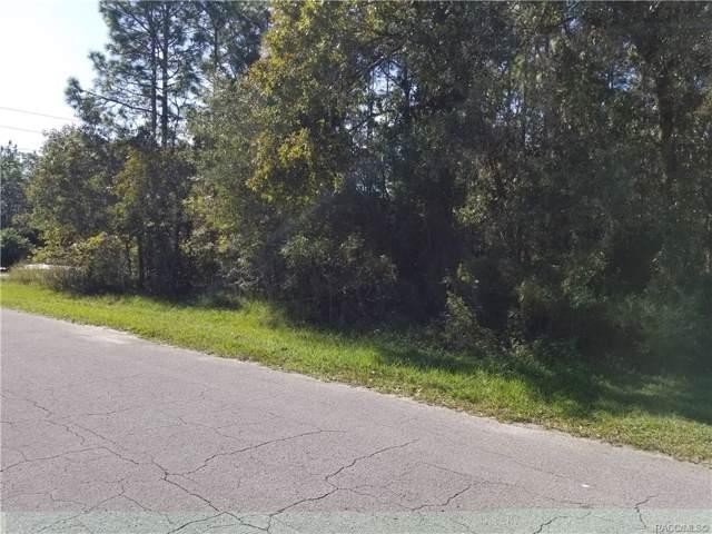 30 Daisy Street, Homosassa, FL 34446 (MLS #787397) :: Plantation Realty Inc.