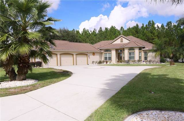 15 S Polestar Point, Inverness, FL 34453 (MLS #787402) :: Plantation Realty Inc.