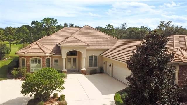 2771 N Crosswater Path, Lecanto, FL 34461 (MLS #787404) :: Plantation Realty Inc.