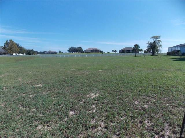 343 N Cherry Pop Drive, Inverness, FL 34453 (MLS #787414) :: Plantation Realty Inc.