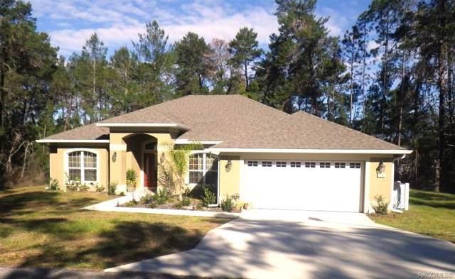 19 Cosmos Court W, Homosassa, FL 34446 (MLS #787418) :: Plantation Realty Inc.
