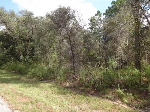 0 NW Buena Vista Boulevard, Dunnellon, FL 34433 (MLS #787421) :: Plantation Realty Inc.