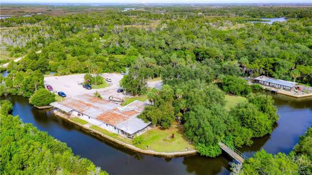 1650 S Fishcreek Point, Crystal River, FL 34429 (MLS #787447) :: Plantation Realty Inc.