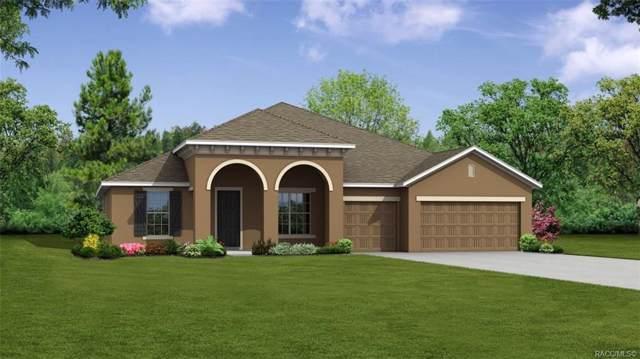 6 Nemesia Court E, Homosassa, FL 34446 (MLS #787493) :: Plantation Realty Inc.