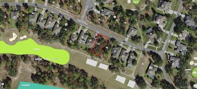 14 Deerwood Drive, Homosassa, FL 34446 (MLS #787513) :: Plantation Realty Inc.