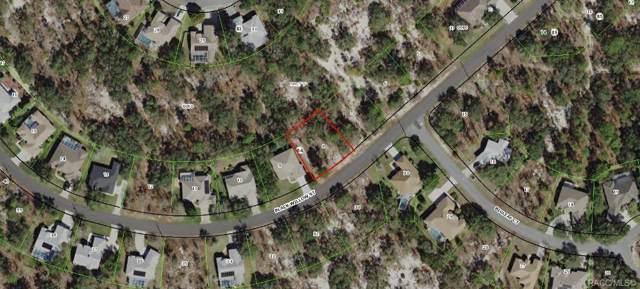 46 Black Willow Street, Homosassa, FL 34446 (MLS #787532) :: Plantation Realty Inc.