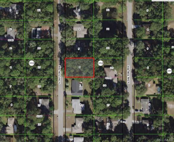 3415 S Dayton Terrace, Inverness, FL 34452 (MLS #787542) :: Pristine Properties
