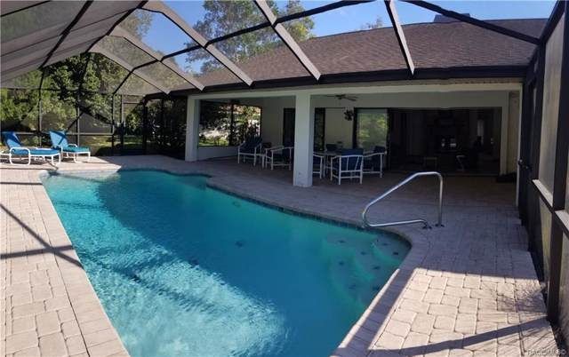 12 Fig Court E, Homosassa, FL 34446 (MLS #787584) :: Pristine Properties