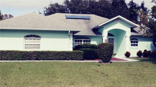 259 E Eureka Court, Hernando, FL 34442 (MLS #787591) :: Pristine Properties