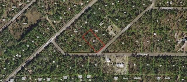 8072 N Downs Drive, Crystal River, FL 34428 (MLS #787645) :: Plantation Realty Inc.
