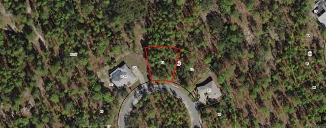 14 Elder Court E, Homosassa, FL 34446 (MLS #787648) :: Plantation Realty Inc.