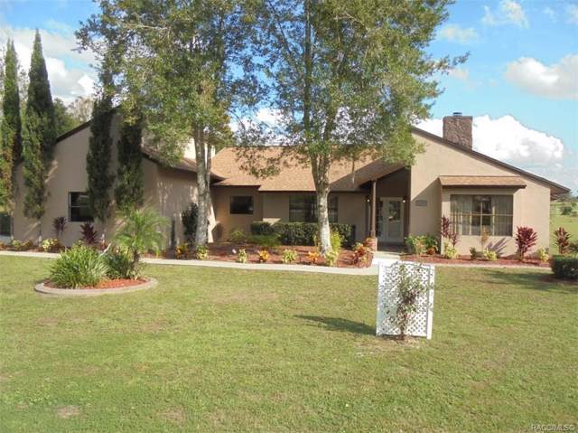 1699 N Annapolis Avenue, Hernando, FL 34442 (MLS #787657) :: Pristine Properties