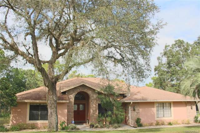 10 Bonnie Court S, Homosassa, FL 34446 (MLS #787663) :: Pristine Properties