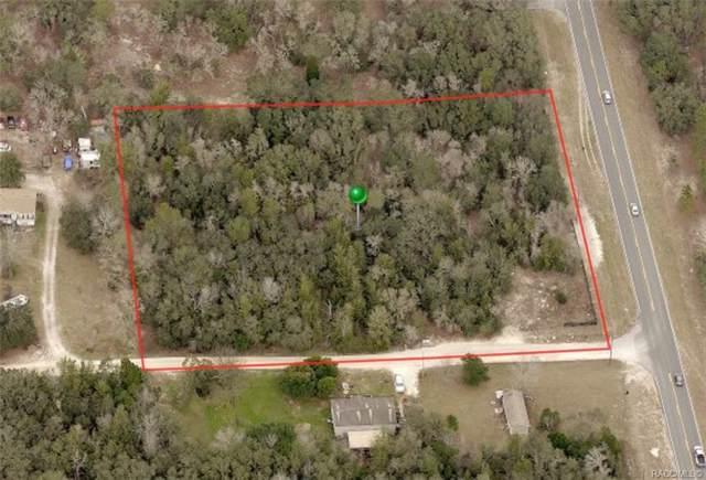 1141 W Brandywine Street, Lecanto, FL 34461 (MLS #787684) :: Plantation Realty Inc.