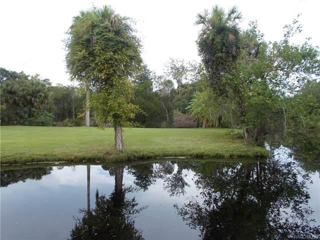10575 W Yulee Drive, Homosassa, FL 34448 (MLS #787717) :: Pristine Properties