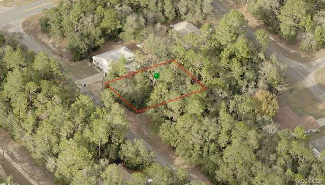 8961 N Cortlandt Drive, Citrus Springs, FL 34434 (MLS #787765) :: Plantation Realty Inc.
