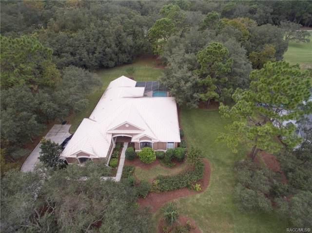4455 N Pine Valley Loop, Lecanto, FL 34461 (MLS #787791) :: Plantation Realty Inc.